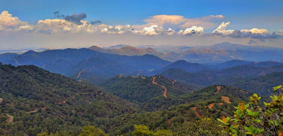 Горы троодоса, Вавацинья